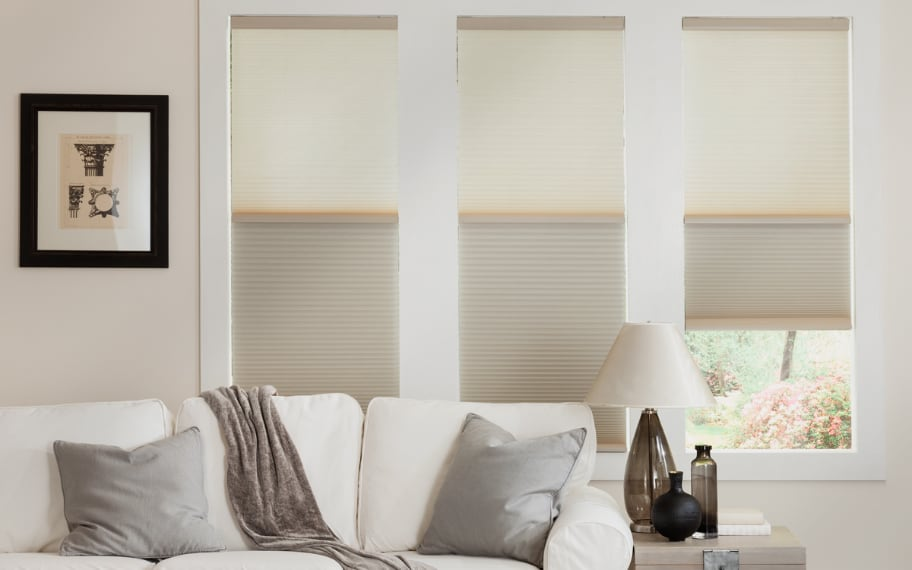 Cellular Shades in a Sitting Room